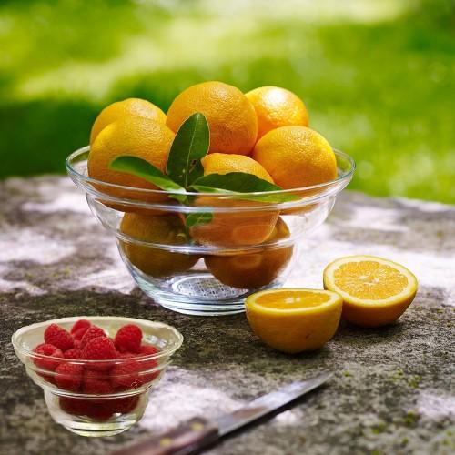 Nature's Design Glas Schale Cotula für Obst & Dessert