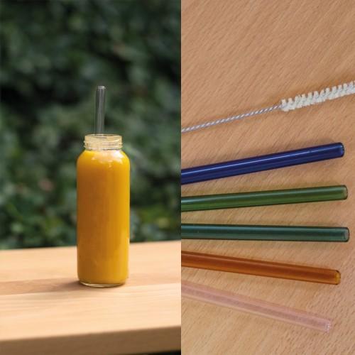 10 Smoothie Trinkhalme Borosilikatglas, klar oder bunt | Living Designs