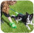 Beco Pets Kotbeutel-Spender an der Hundeleine
