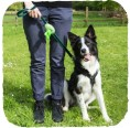 Beco Pets Kotbeutel-Spender