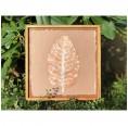 Fine Art Pieces Leaf Bild mit Blatteindruck braun