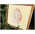 Sundara Paper Art Fine Art Pieces Leaf