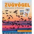 ZUGVÖGEL – Kinder Sachbuch auf Öko Papier   Willegoos