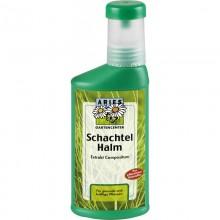 Bio Schachtelhalm Extrakt Compositum – vegan