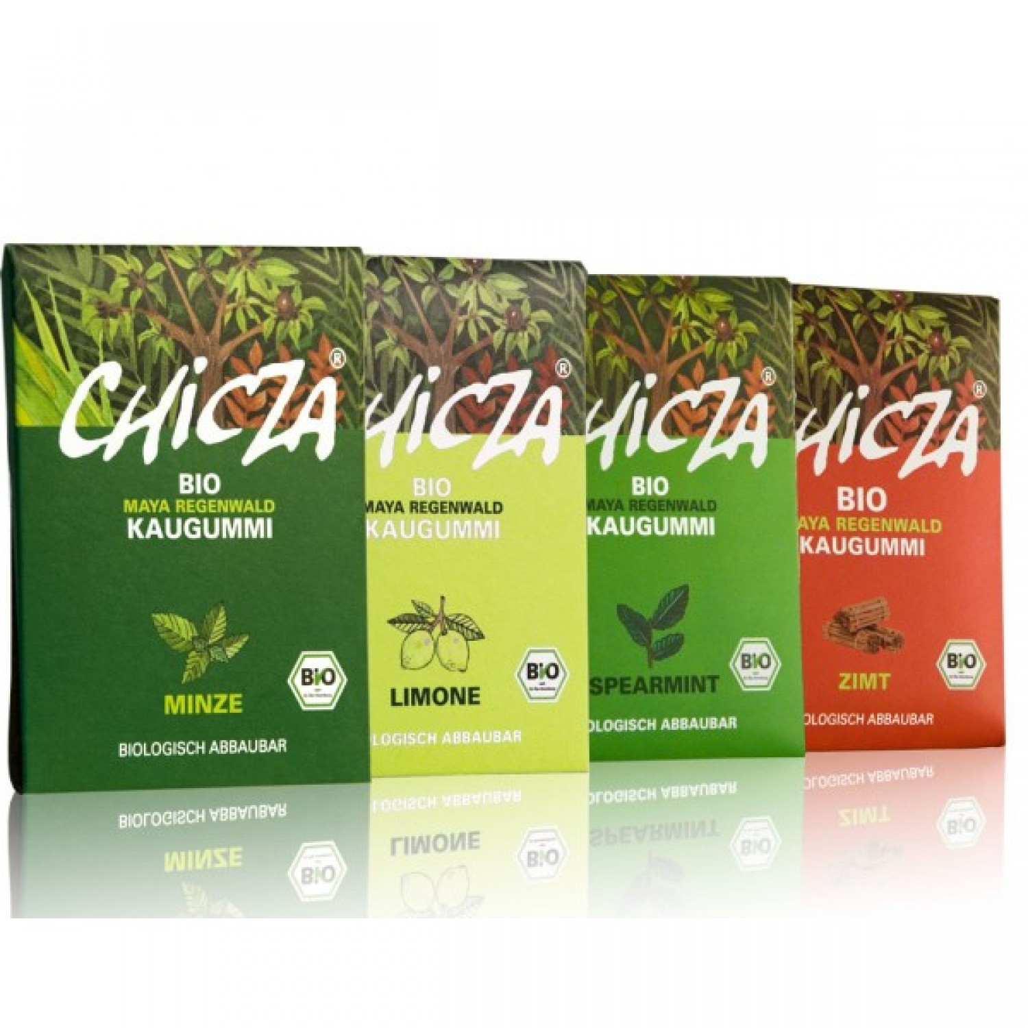 Vegan Organic Rainforest Chewing Gum 4-pack