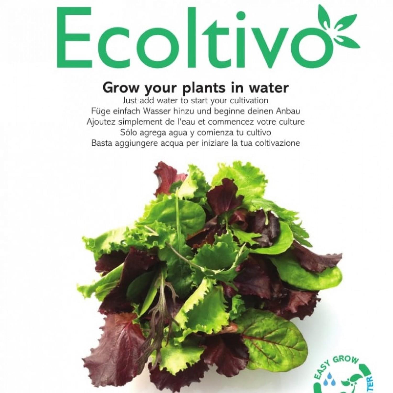 Gemischter Salat Smart Garden fürs Büro | Ecoltivo