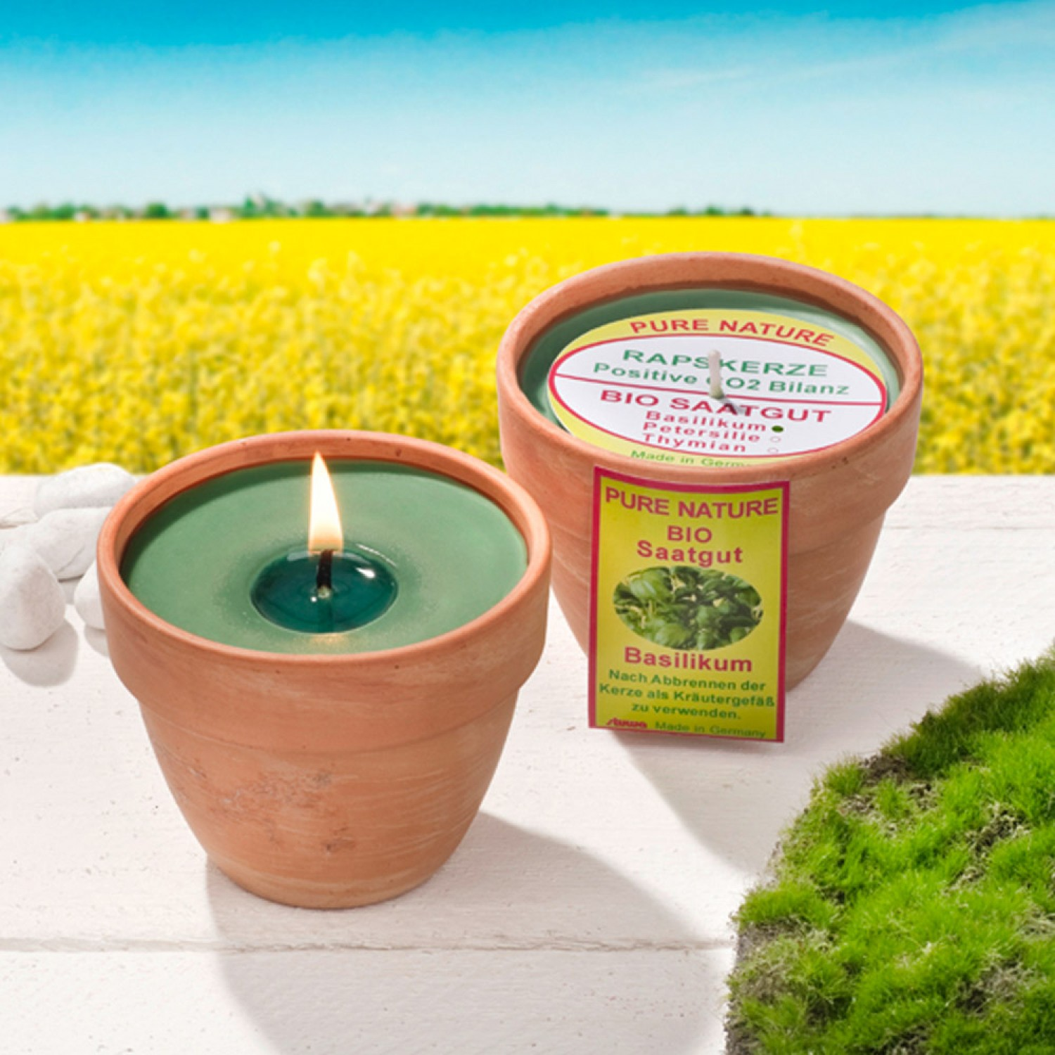 Rape Wax Candles with organic seeds in Terracotta Pot | stuwa