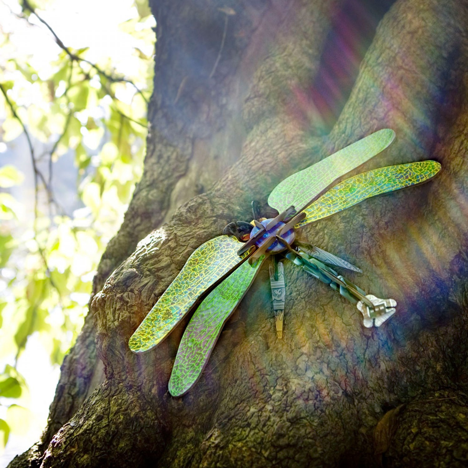 Tinker Toy DRAGONFLY | studio ROOF
