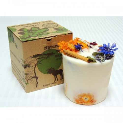 Eco soy wax candle Cinnamon + Orange