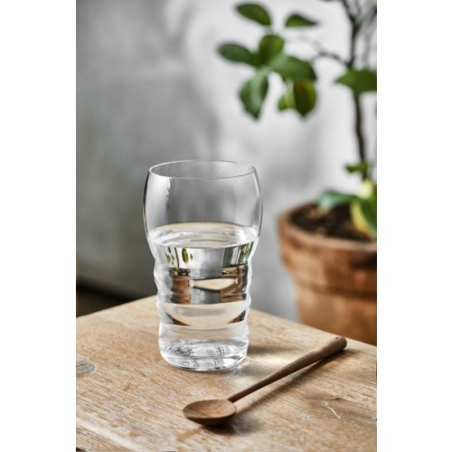 Nature's Design Drinking Glass Galileo 0.5 l with Flower of Live