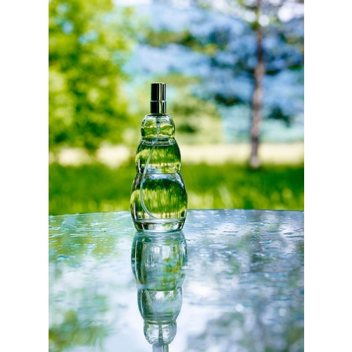 Sprayer AIR-ION air freshener | Nature's Design