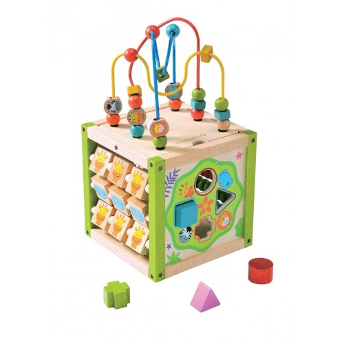 EverEarth My first 5 in 1 activity cube - FSC wood