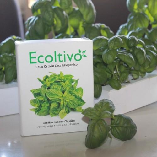 Basilikum Hydrokultur Pflanzset für Zuhause | Ecoltivo