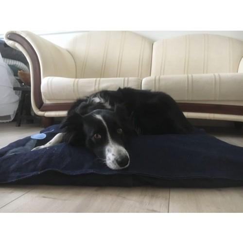 Personalized Dog Pillow with Motif, GOTS Hemp Denim | Unique Dog
