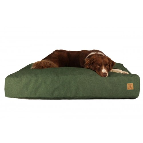 BUDDY Dog Bed green, sustainable bed for dogs | naftie