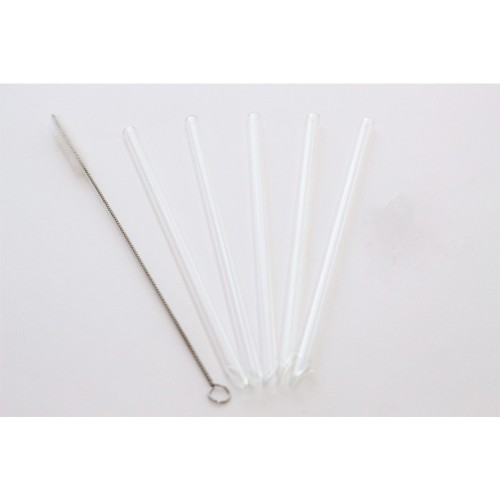 10 straight Glass Drinking Straws 21 cm, bevelled bottom