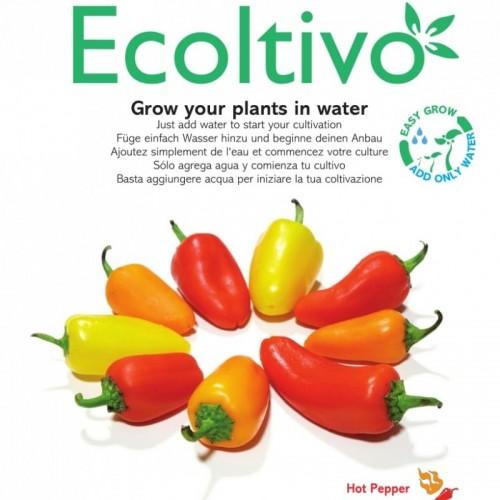 Scharfe Peperoni Hydrokultur Pflanzset m. Samen | Ecoltivo