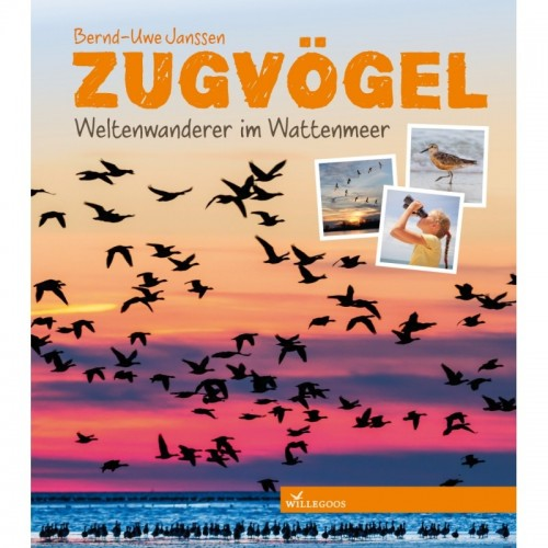 Migrating Birds - German factual children's book | Willegoos