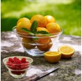 Nature's Design Glass Bowl Cotula for fruits & dessert