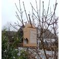 Bird House Bird Box