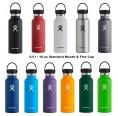 Hydro Flask Insulated Bottle 18oz Standard Mouth & Flex Cap