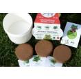 Urban Gardening Organic Herbs Pots | ARIES