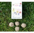 Organic Seedballs Bee Pasture by ARIES