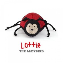 Lottie the Ladybird - Beco Family for Cats