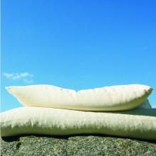 Pillow with Organic Millet Husks and Natural Rubber and Pillow Slip of Organic Cotton Herringbone Ticking