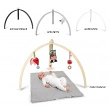 Baby Spyder Wood Activity Play Gym in Different Colours