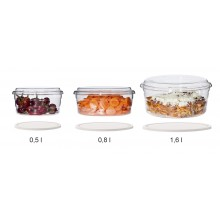 Glass Bowl CENTRIC with Glass Lid and Plastic Lid – different sizes