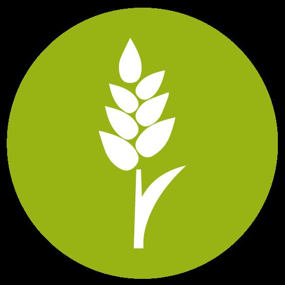 Raw material from organic farming